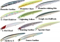 DAIWA SHORE LINE SHINER SLENDER 12 TOUGHCON SAYORI